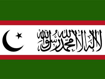Flag_of_the_Islamic_Renaissance_Party_of_Tajikistan